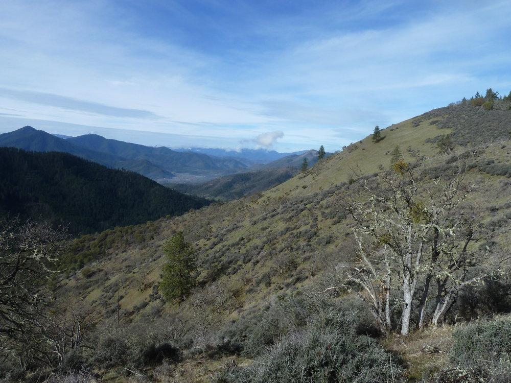 Bishop Ridge on the East Applegate Ridge Trail.