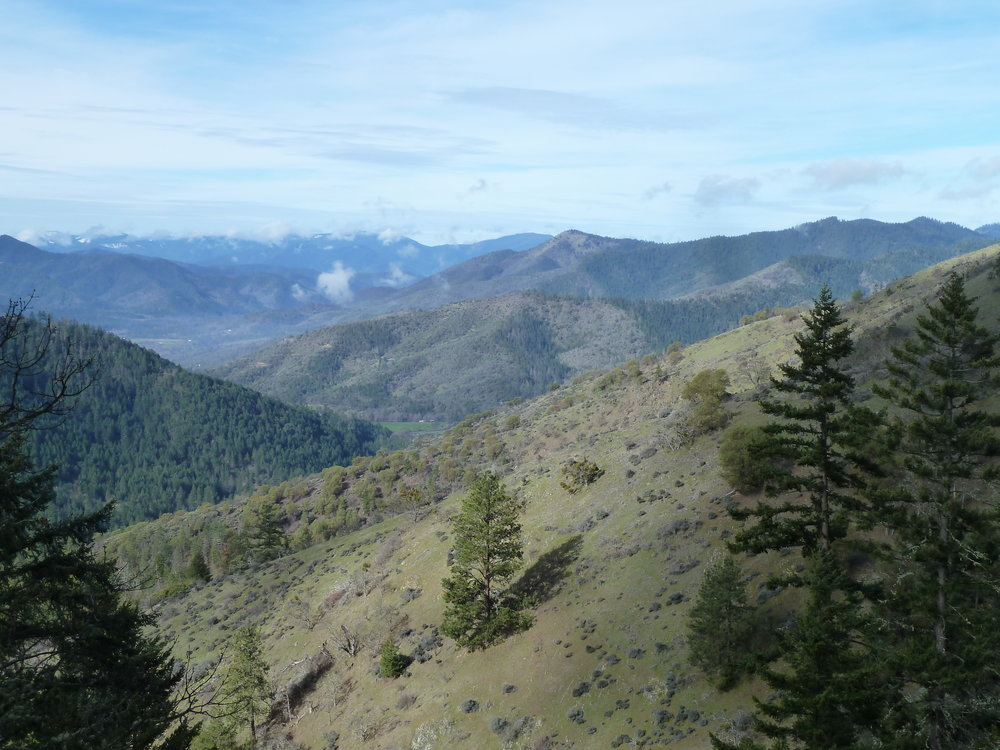 View toward Ruch from the East Applegate Ridge Trail (ART)