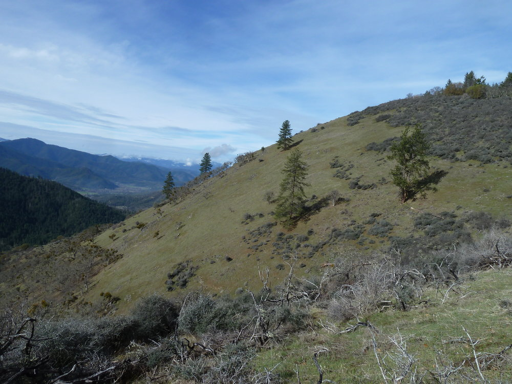The East Applegate Ridge Trail will traverse these beautiful open slopes above Bishop Creek.