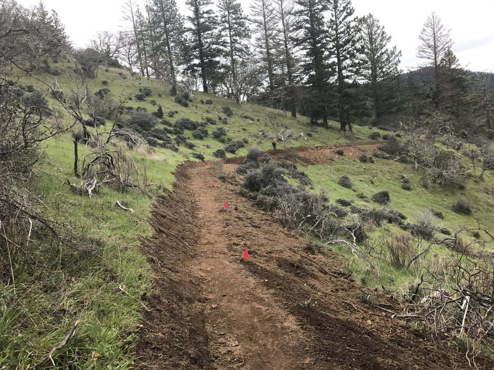 A newly built section of the East Applegate Ridge Trail