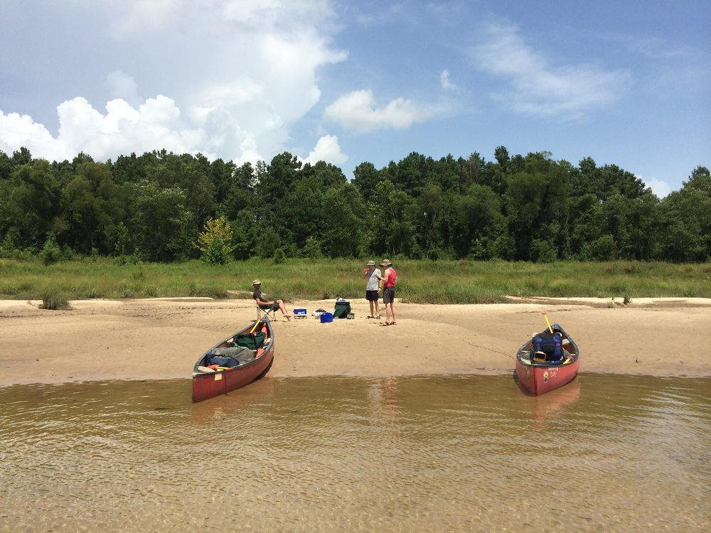 Canoes we rented from an outfitter on our  Sabine River trip .