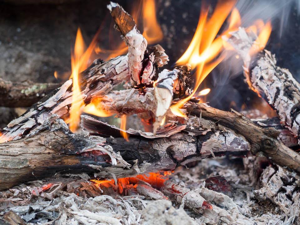 Fire (1 of 1).jpg