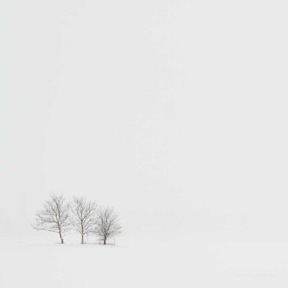 Pete Hudeck Winter.jpg