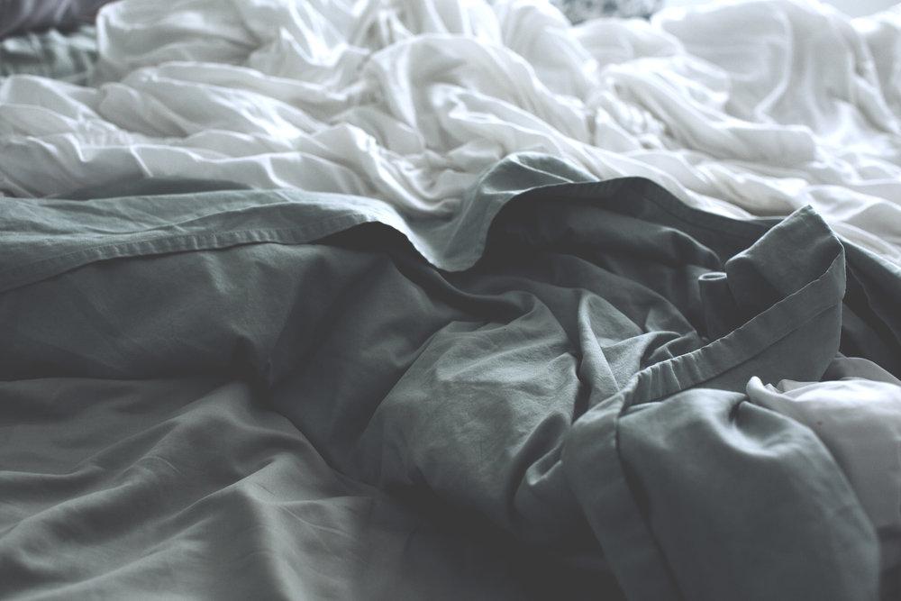 Bedroom Wilderness, HOME