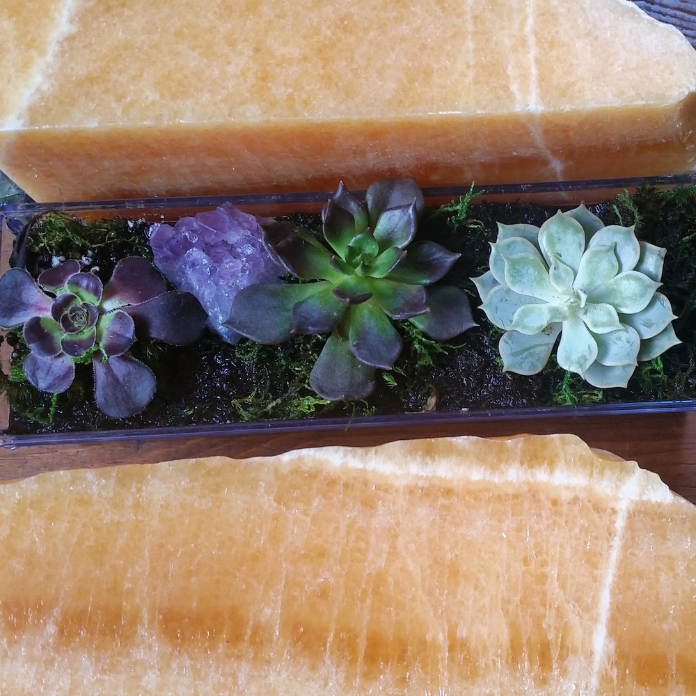 Succulents & Orange Calcite