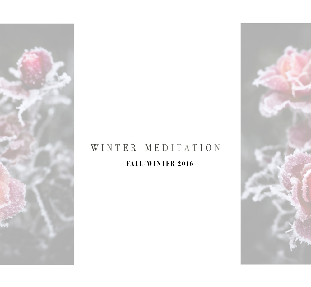 winter cover-1 copy.jpg