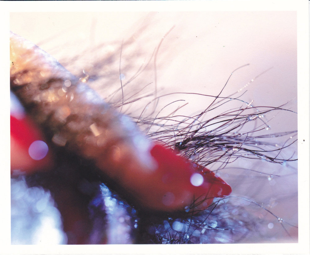 Marilyn_Minter_romeo_erotic_3.jpg