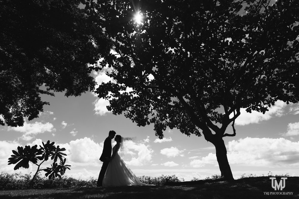 Trump_Hotel_Plumeria_Garden_Hawaii_Wedding_Photography-026.jpg