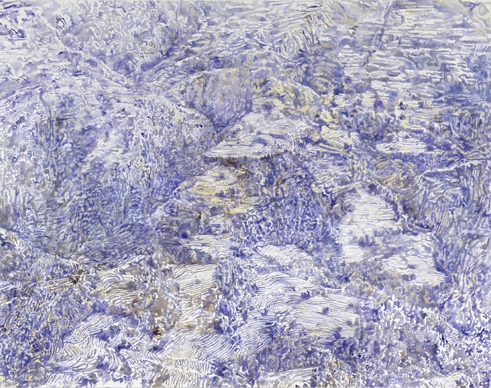 mountainside, fields   tempera & oil on cotton  195 x 250 cm   2007