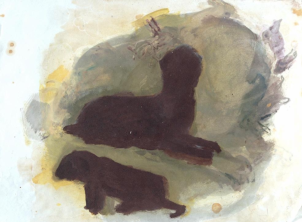 rabbits, on the run