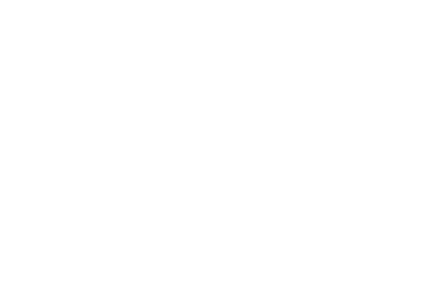 Bluestone Asset Management