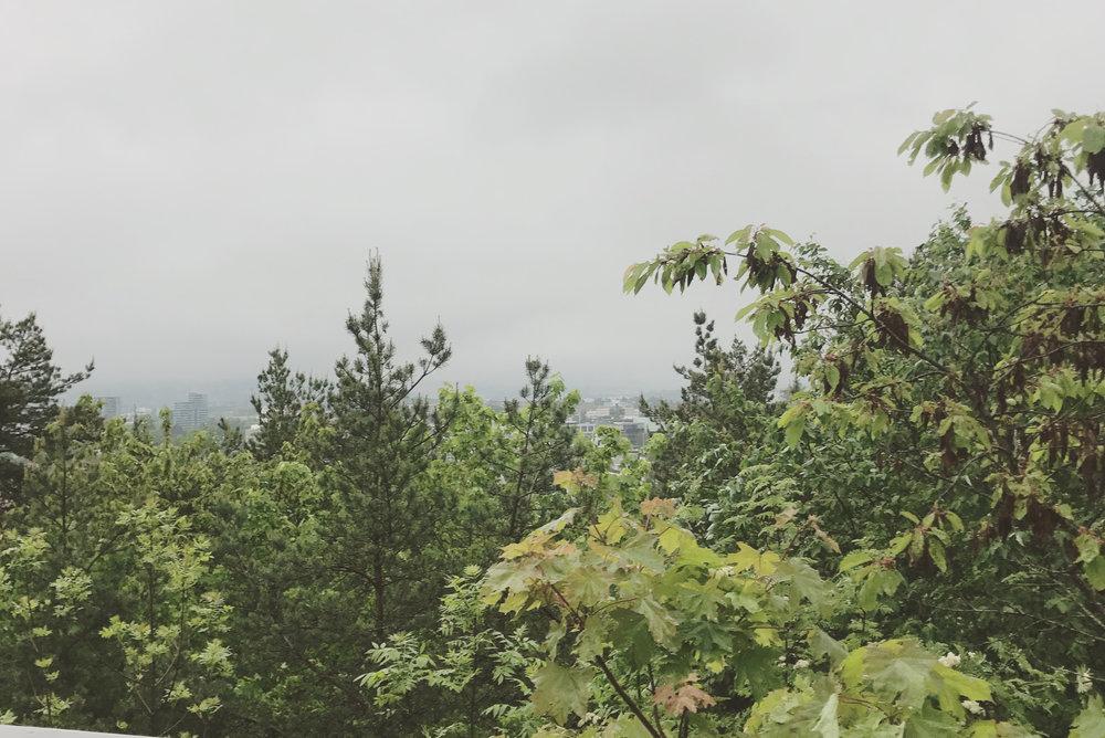 6/2017 - Befaring - nytt og spennende prosjekt i Oslo