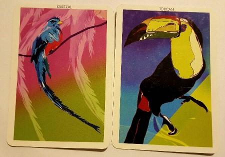 QuetzalToucan.jpg