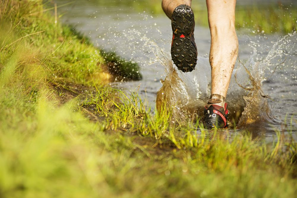 Invest in the right trail-running shoe for the terrain