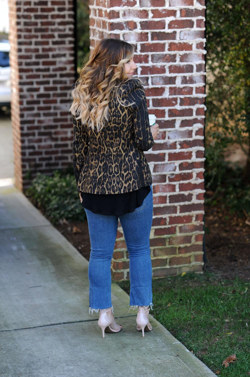 leopard 6.jpg