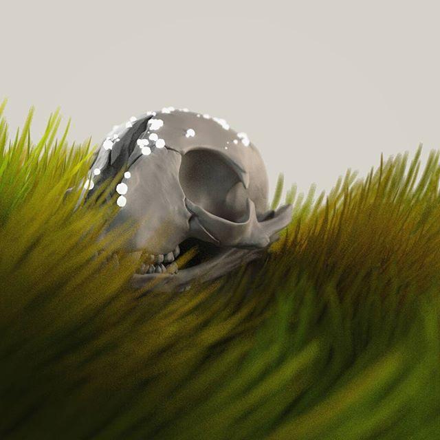 Skull #renderman #zbrush #houdinifx #cgi #cg #3d #3dsculpt #sculpt #rendering #grass #skull
