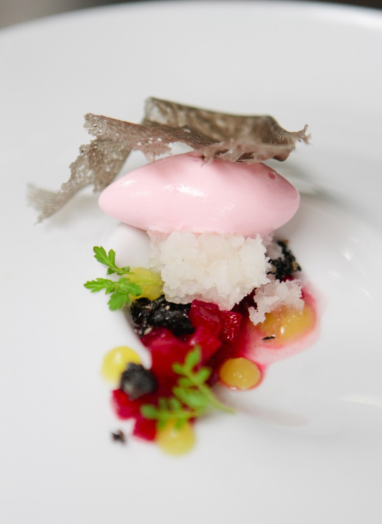 Vanilla Aloe Granita w/ Umeboshi Sorbet from Chef Monica Glass (Clio) - A Thought For Food #Boston