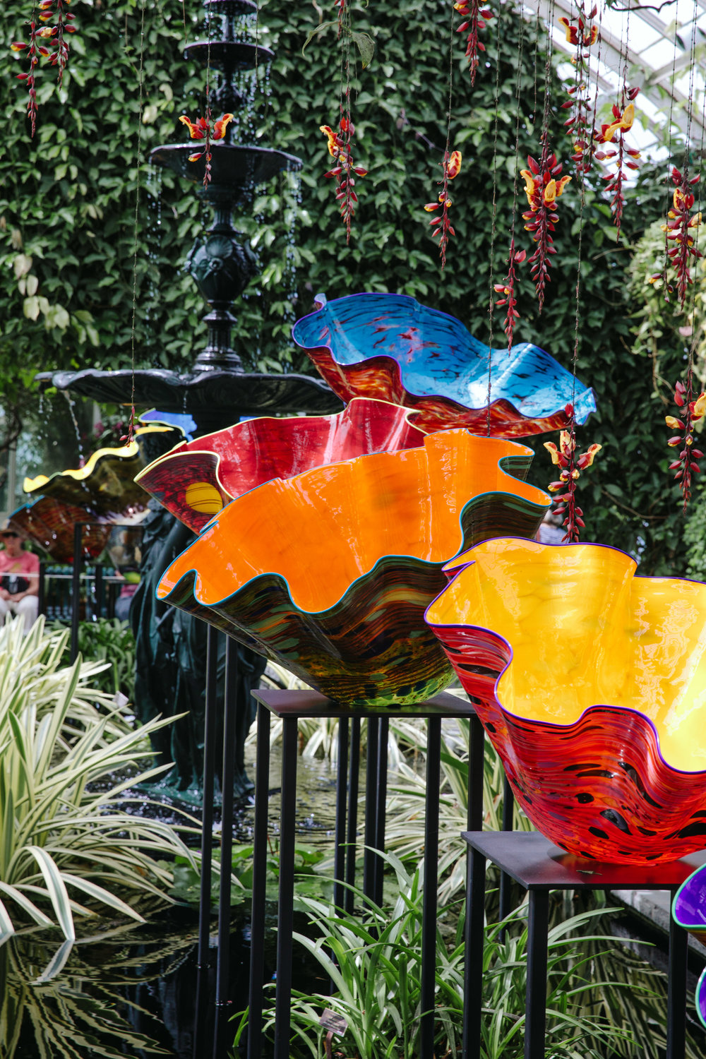 CHIHULY NY BOTANICAL GARDEN_BRIAN SAMUELS_AUGUST 2017-7171.jpg