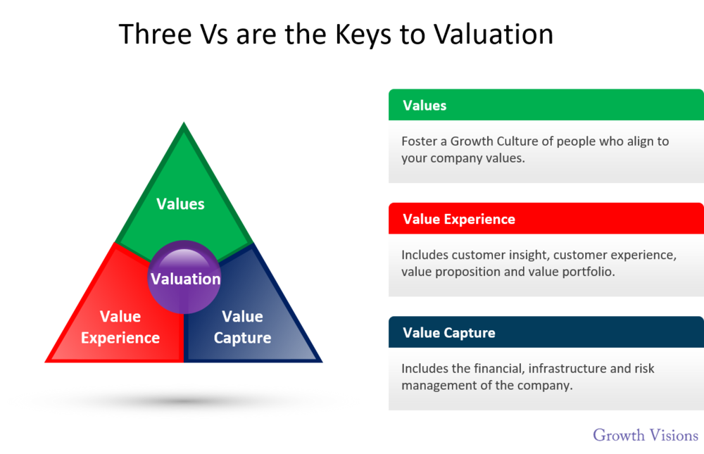 Growth Vision - Three Vs to Valuation