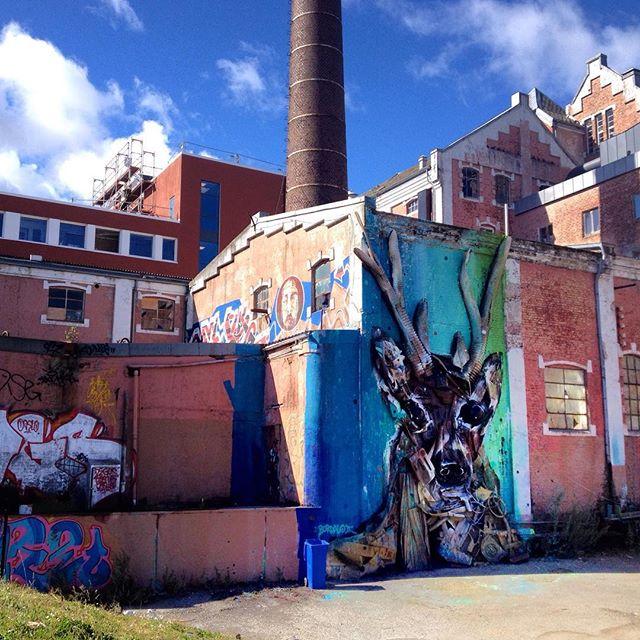 @b0rdalo_ii in a sunny #Stavanger #bordaloII @nuartfestival #nuartfestival #nuart #streetart #installation #mural #bordalo