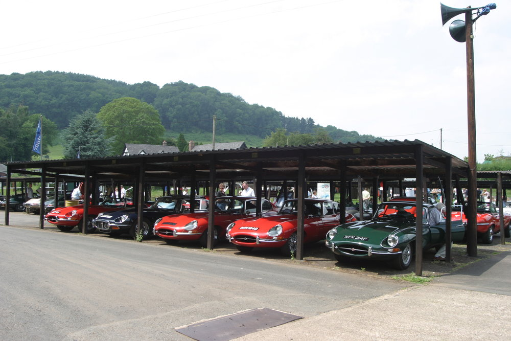 A fine display of E-types in the Shelsley Paddock.JPG