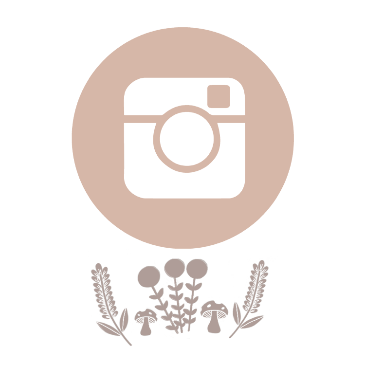 instagram 1.png