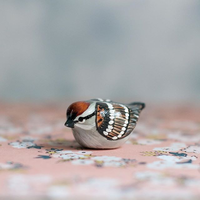 A sweet little........? Guess the bird! Don't forget- shop update this Monday at 8pm EST! #periwinklenuthatch