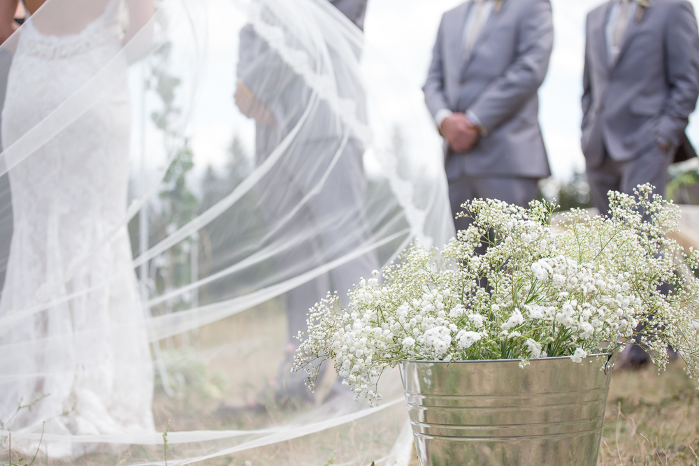 catherdral veil wedding dress