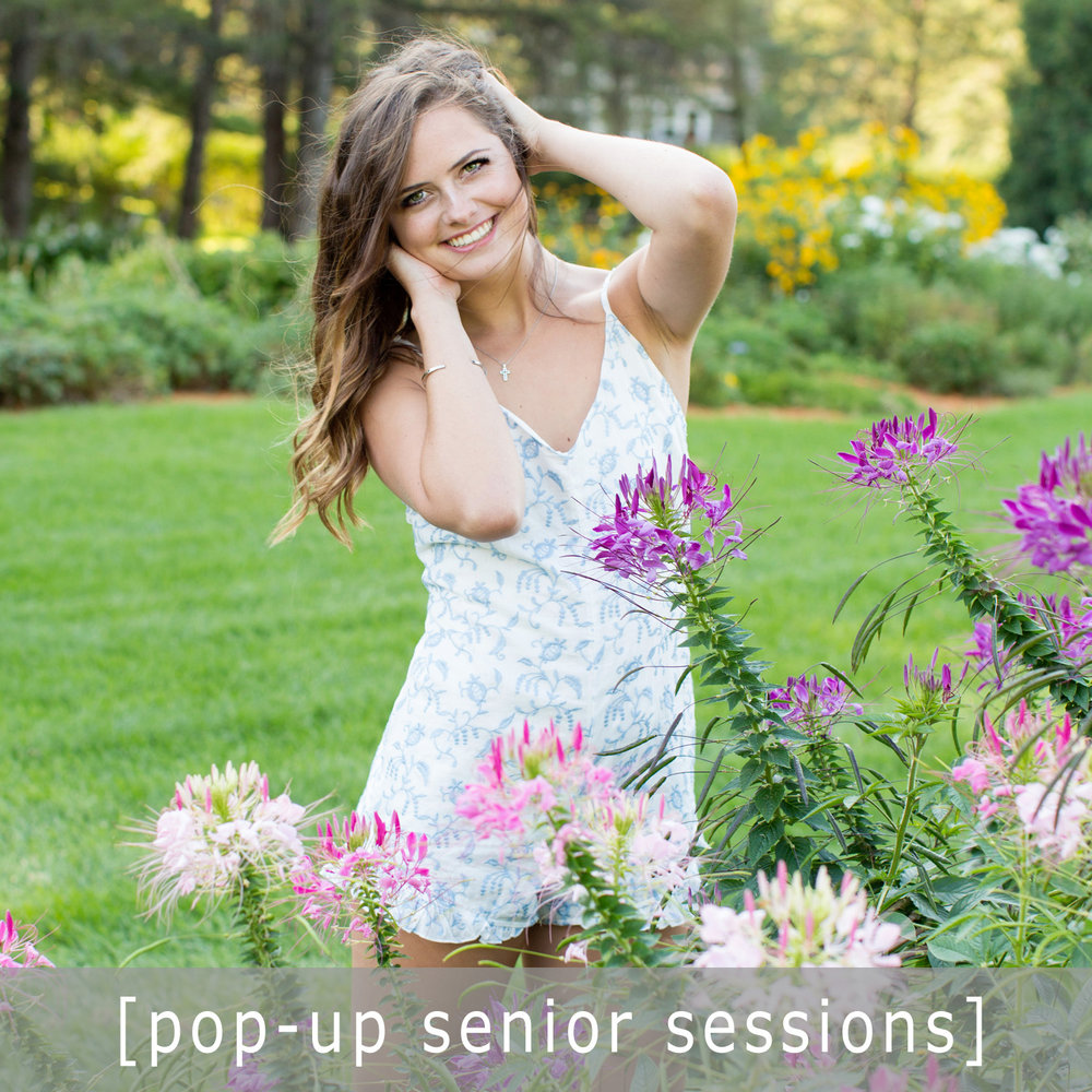 popup sessions.jpg