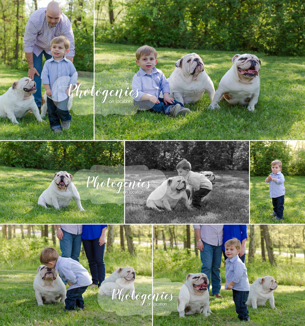 family_photography_poses_spring_toddler_dogs_st_louis_candid_pics 3.jpg