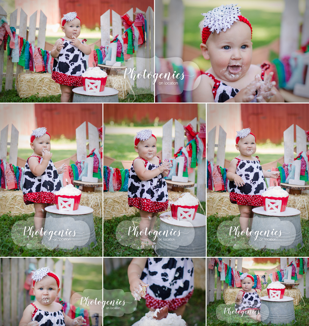 farm_barnyard_cake_smash_theme_birthday_first_family_barn_photography 3.jpg