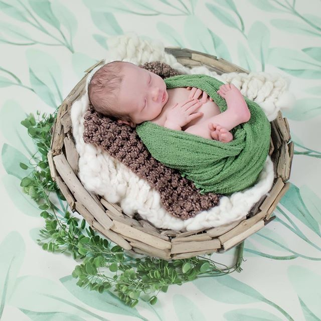 Baby Brady slept like a champ at his newborn session!