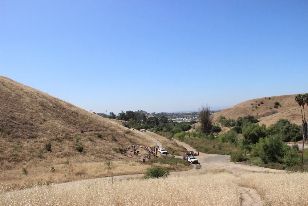 Saturday, April 23, 2016  North East Trees – Ascot Hills Park