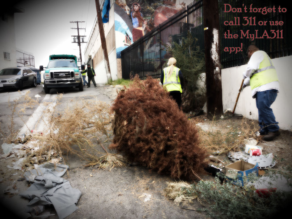 Don't forget to call 311 or use the MyLA311 app to pick up abandoned waste or illegal dumping in your neighborhood.