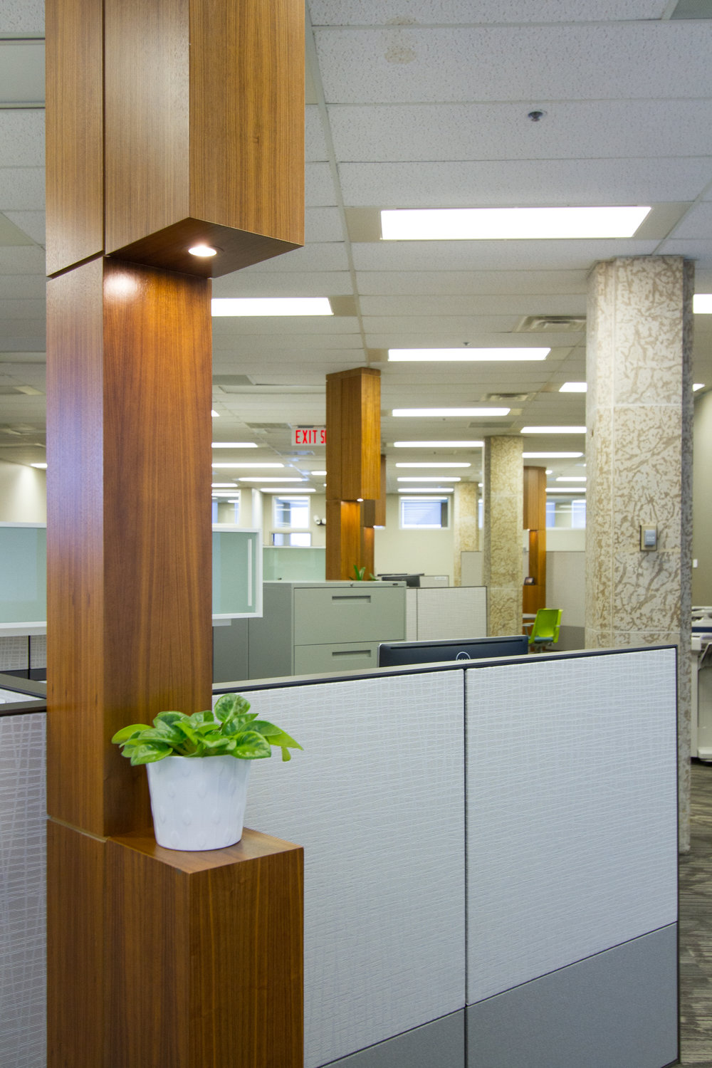 Walnut Column concealing power & data