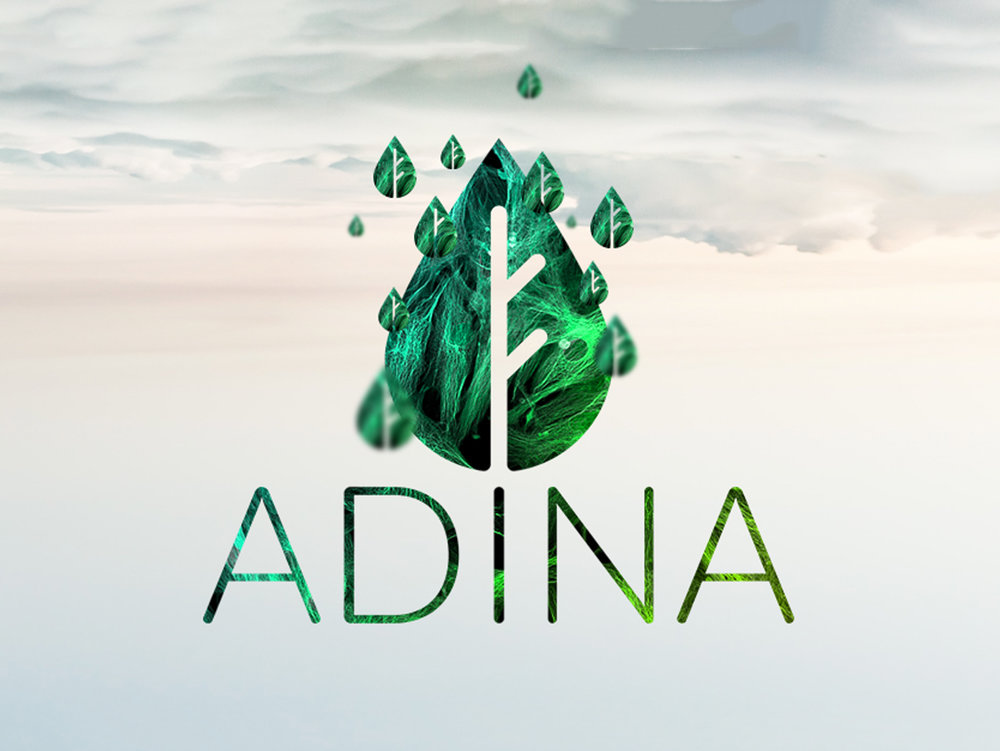 Adina - A company which produces organic ingredients for make up and other beauty related materials needed a rebrand. Adina approached us in need of fresh idea, they ask for iconic logo which can represent companies profile, suppliers and customers. We designed droplet leaf logo that represents water and earth as organic company and complemented the colour palette with vibrant green and blue spectrum.