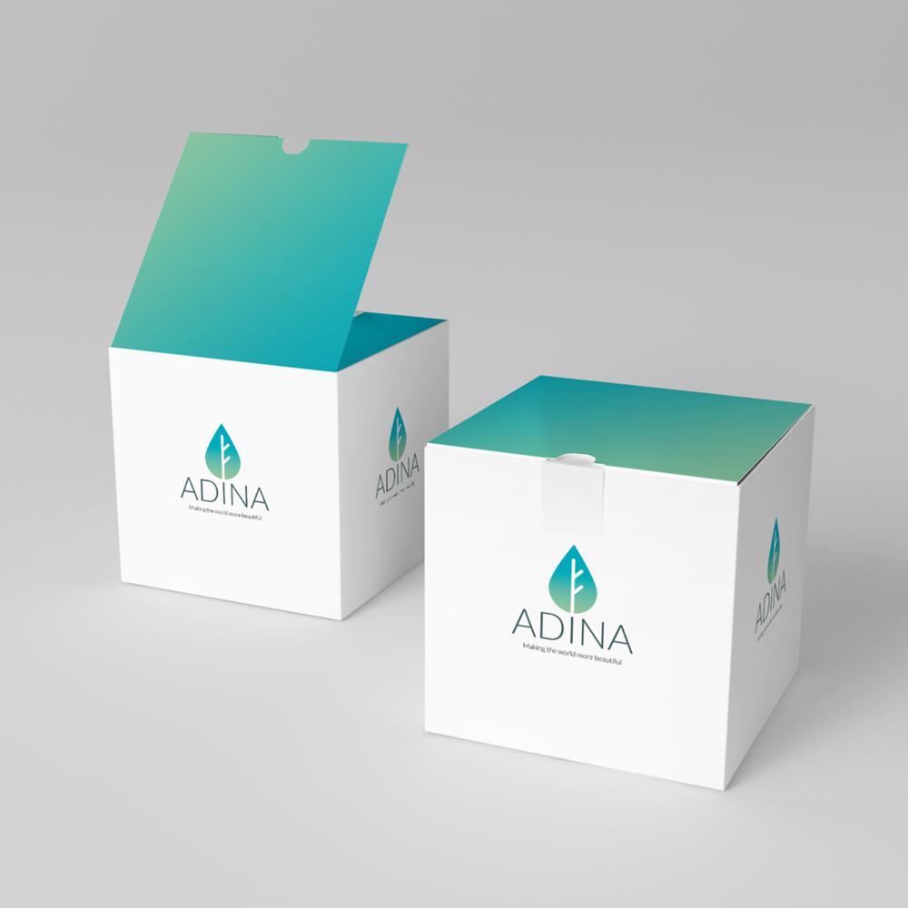 adina-box.png