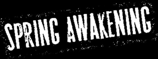 Spring Awakening Broadway
