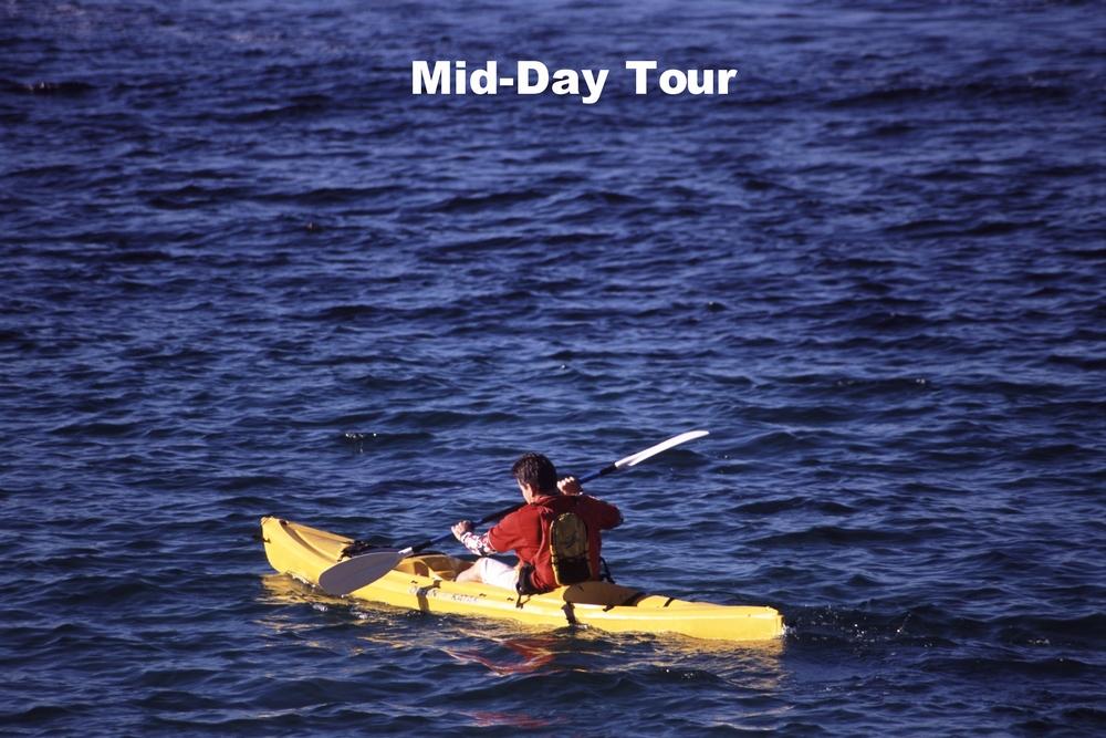 kayak-350476.jpg