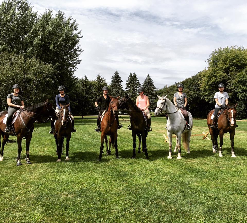 SMF Horses.jpg