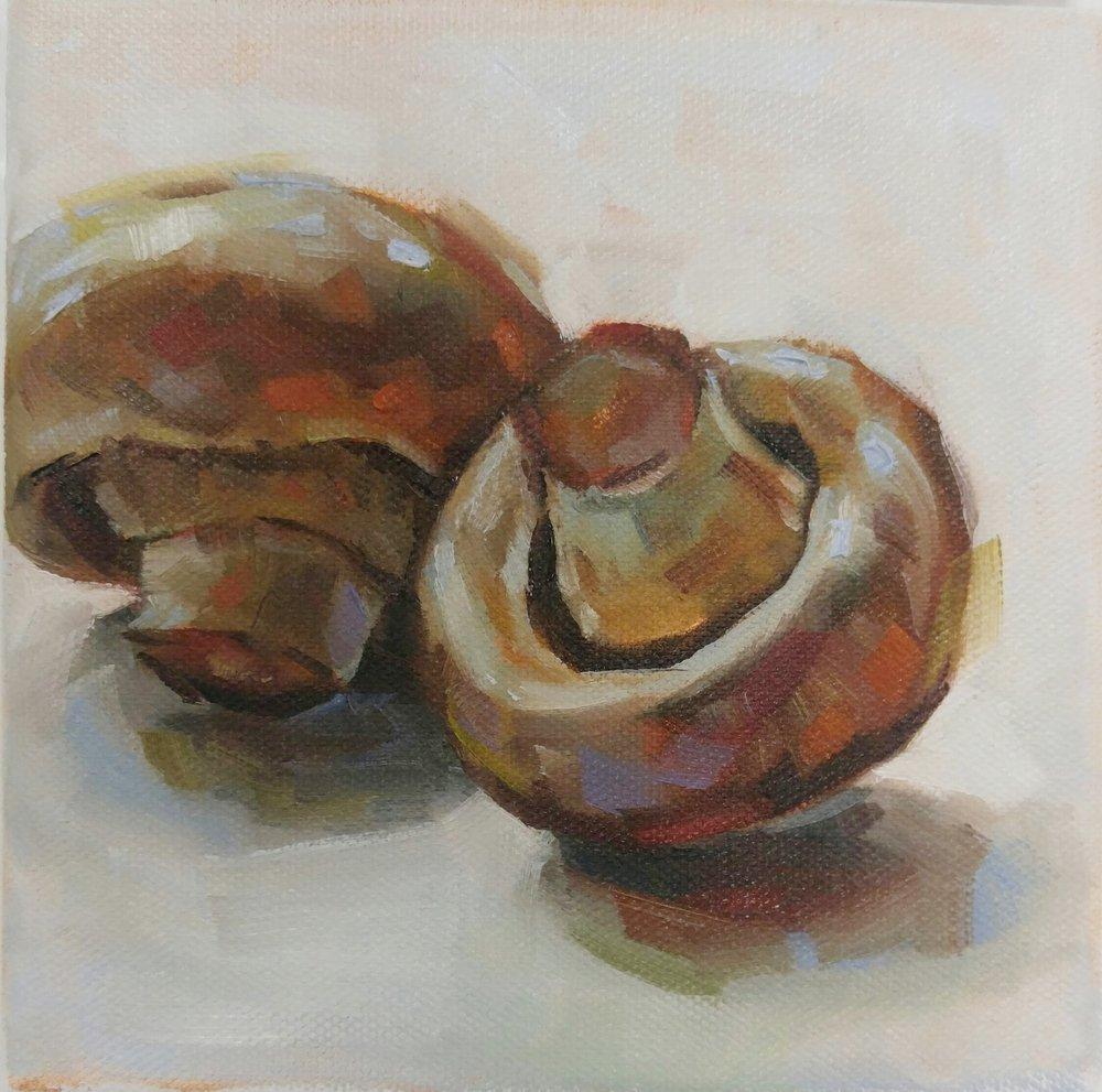 Mushrooms, 6x6