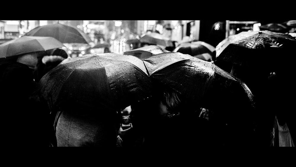 umbrelllaass.jpg