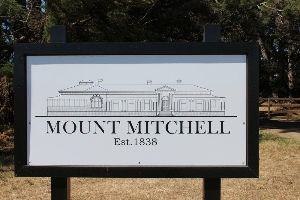 MtMitchell 2101201728.jpg