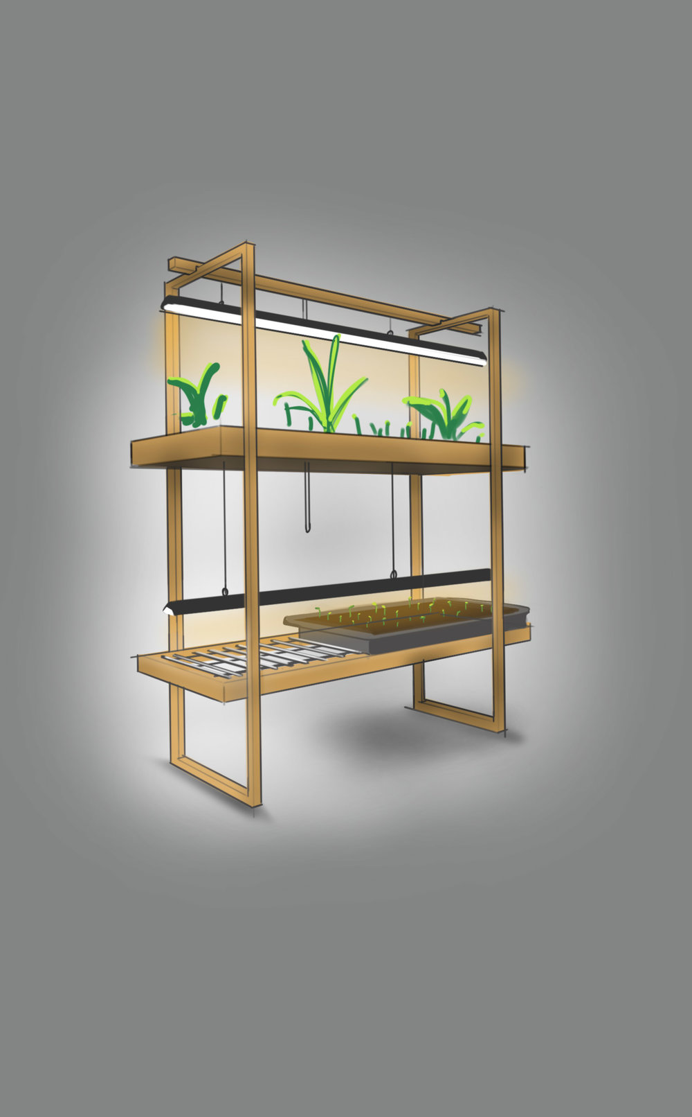 PlantShelf.jpg