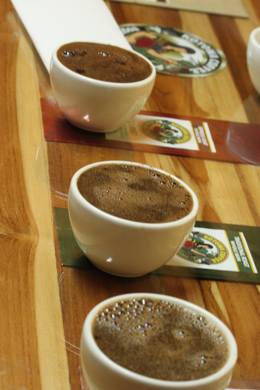 Tasting Coffee in Boquete