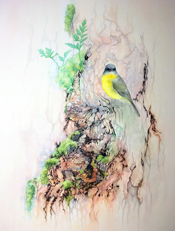 Laura Grogan - Eastern Yellow Robbin