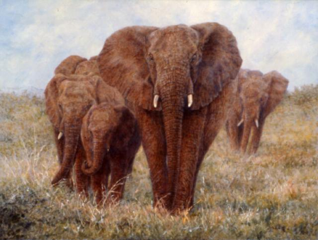 ElephantWalk-18x24-oil.jpg