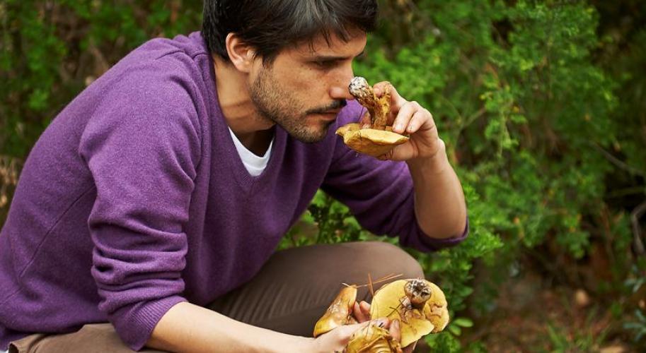 virgilio_martinez-mushrooms.jpg