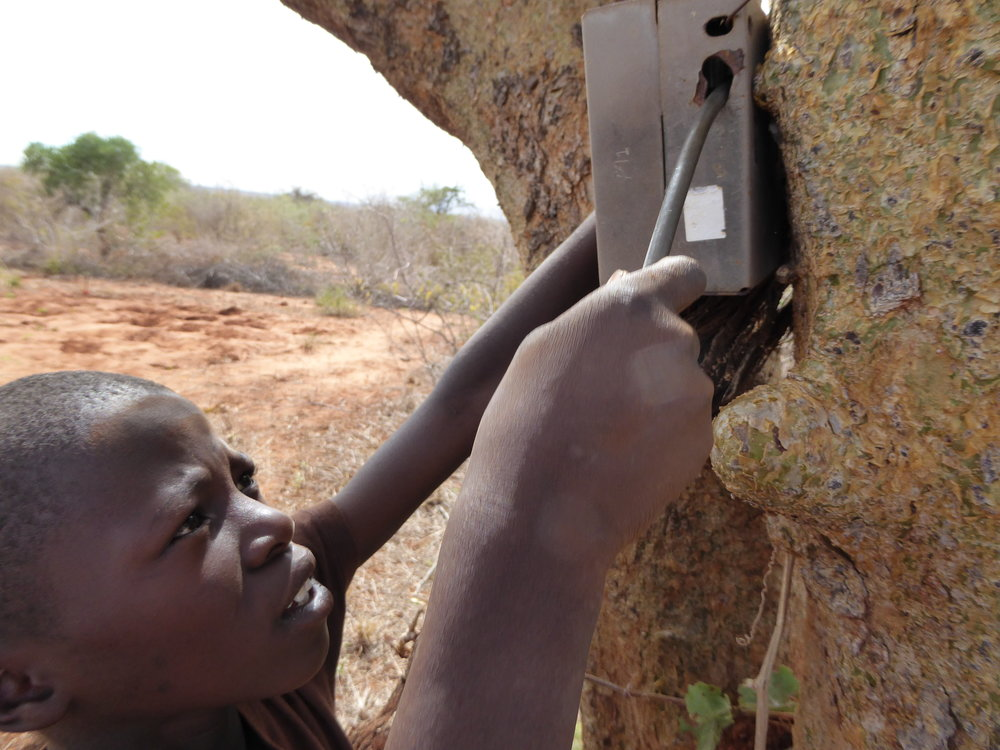 Camera-Trap Research