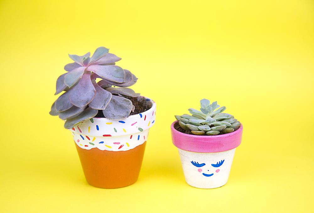 Succulent pots like candy!